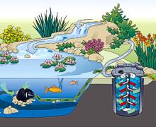 Durchlaufilter-Teich